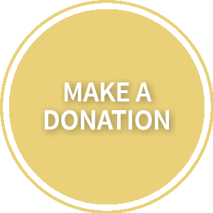 How To Help Freedom House